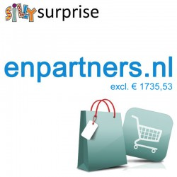 enpartners.nl